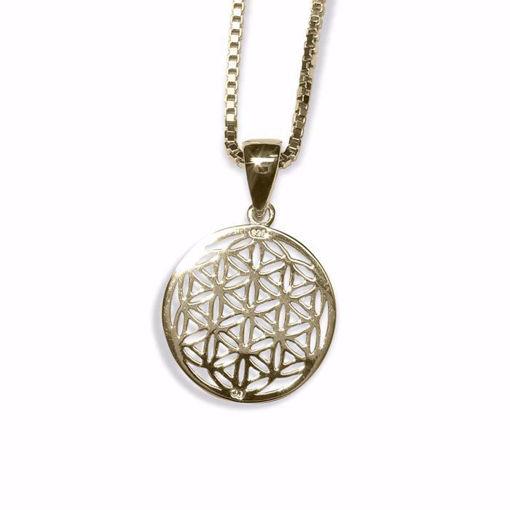 Sølv smykke i forgylt sølv -131220181