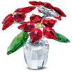 Swarovski figurer Poinsettia - 5538626