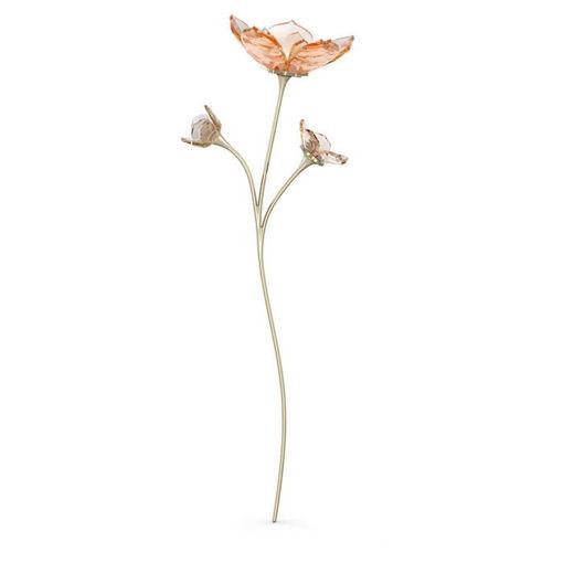 Swarovski figur Garden Tales Magnolia