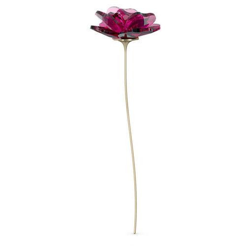 Swarovski figur Garden Tales Rose - 5557800