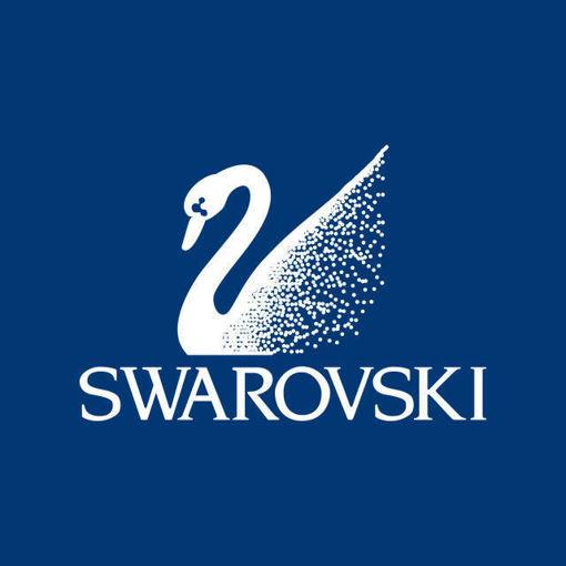 Bestillingsvare Swarovski